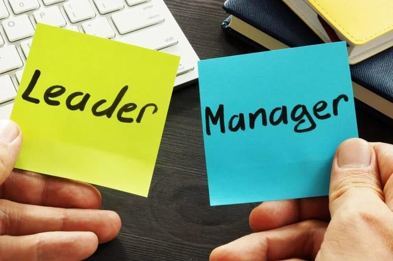 Leadership vs management culture - min