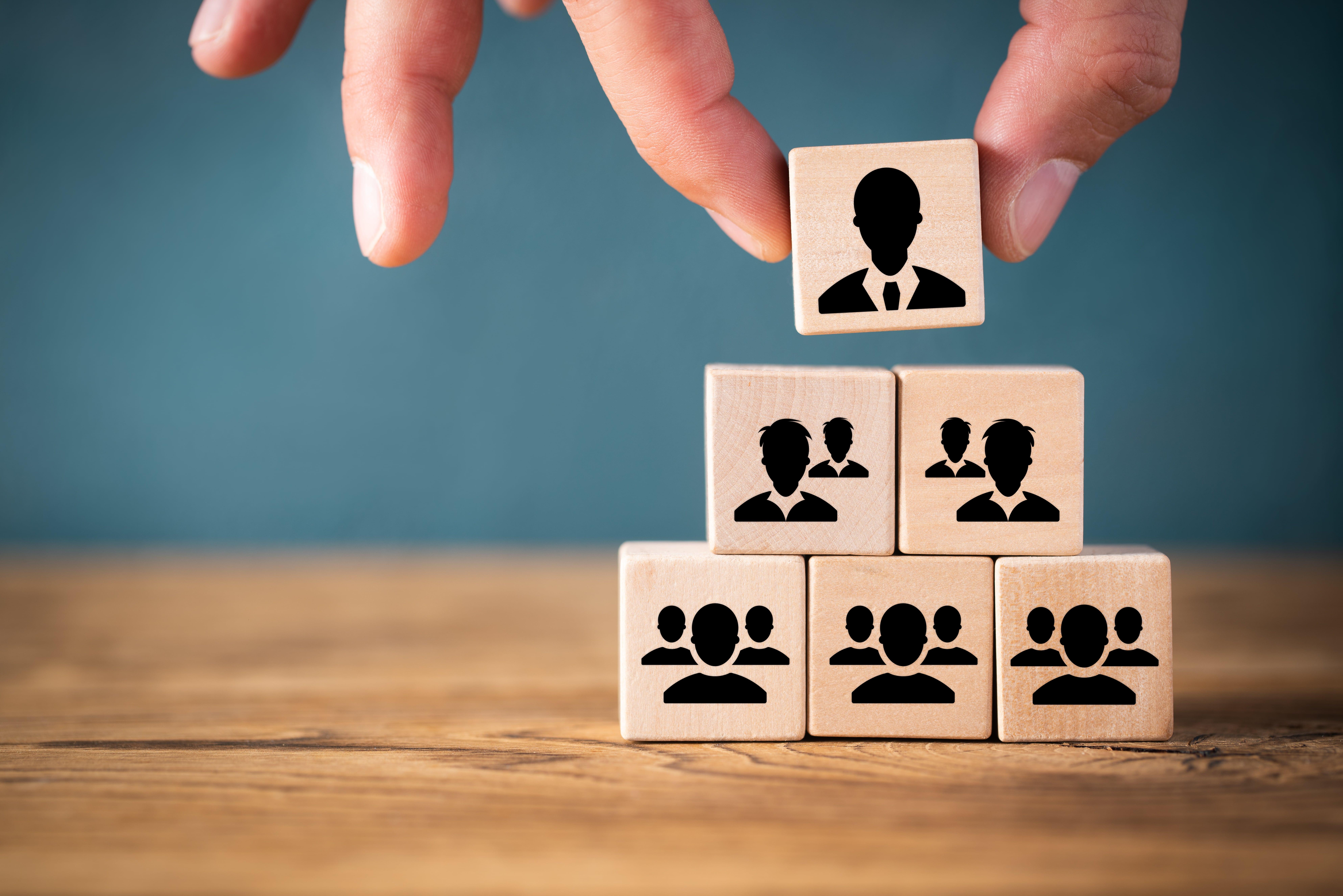 hierarchy culture organisation