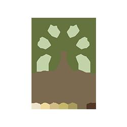 Lanes Employment Solutions LTD Logo
